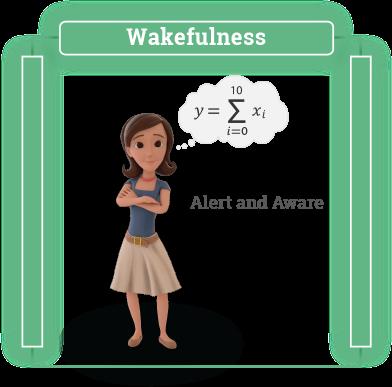 Wakefulness infographic